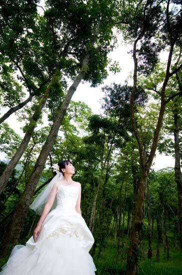 http://www.istay.tw/images_blog/DSC_3837.jpg